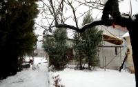 Piliscsaba Eladó Ház